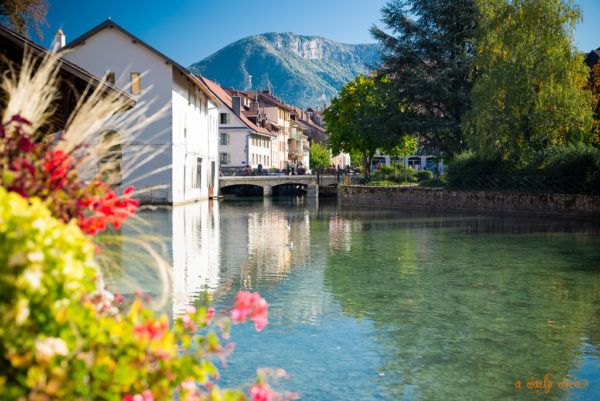 photo photographe annecy adailydream ville fleurs riviere