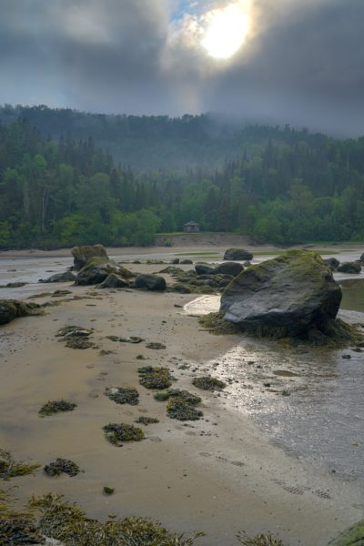 photo paysage photographe adailydream canada road trip plage forêt